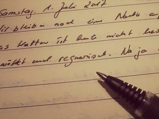 Tagebuch schreiben.