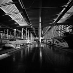 * (doistrakh) Tags: lomo lca120 mediumformat 120film 6x6 square bw monochrome blackandwhite film travel europe spain espana madrid trainstation train renfe madridpuertadeatocha
