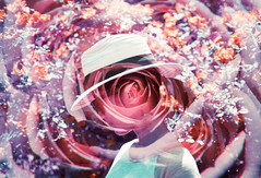 Lavender Shade (Hayden_Williams) Tags: flower rose girl petals bloom blossom person spring garden roses profile portrait dream dreamy dreaming think thoughts doubleexposure multipleexposure analog analogue canonae1 film fd50mmf18 lomography lomo lomochromepurplexr100400