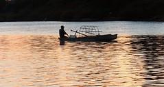 #Cambodia Río Mekong.  5:00am el pescador solitario°°5:00am The lonely fisherman°°  #カンボジア  午前5時。川の孤独な漁師。 (Soros004B) Tags: cambodia camboya カンボジア メコン川 ríomekong mekongriver fisherman pescador boat bote amanecer sunrise water agua sunreflection reflejodelsol loneliness soledad atwork gentetrabajando earlymorning temprano reflection reflejo rurallandscapes paisajerural simplelife simplestructure estructuras vidasencilla silhouette silueta rio river