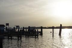 morning (pattykoplitz) Tags: ks2 florida passagrill fishing deepseafishing funday