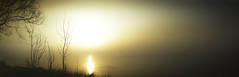 P  h  o  t  o  k  e  r  a  t  i  t  i  s (Arnie Sacknooson) Tags: leezpriory felsted arniesacknooson eos5dmk1 sun solar mist fog january frozen lake ice trees photokeratitis