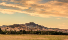 Peaceful Squaw Butte (http://fineartamerica.com/profiles/robert-bales.ht) Tags: facebook fineart flickr gemcounty haybales idaho landscape mountain people photo photouploads places states emmett sweet sunrise squawbutte farm rollinghills scenic idahophotography treasurevalley clouds spring emmettvalley emmettphotography trees sceniclandscapephotography thebutte canonshooter beautiful sensational awesome magnificent peaceful surreal sublime magical spiritual inspiring inspirational wow stupendous robertbales town butte goldenhour sunset valley greetingcard