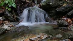 The strength of nature (Alessio Bertolone) Tags: river torrente landscape paesaggio longexposure lungaesposizione trentino it italy italia falls cascata waterfall