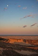 Golden Dunes (Rene'D.) Tags: 2017 amrum dune dunes moon sand sands beach shore cost schleswigholstein germany kniepsand