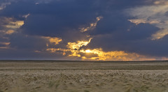 Sonnenaufgang (david_drei) Tags: sachsen weizen borlas sonnenaufgang feld explore thankyou