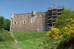 Doune Castle, Scotland (Paul Emma) Tags: uk scotland dounecastle doune riverteith river teith horse castle