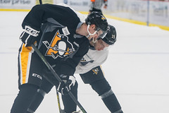 "Pens_Devolpment_Camp_7-1-17-83 • <a style=""font-size:0.8em;"" href=""http://www.flickr.com/photos/134016632@N02/35664040625/"" target=""_blank"">View on Flickr</a>"