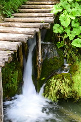 chemin sur l'eau (Laura Sgn) Tags: plitvicelakes lacsdeplitvice cascade eauturquoise wood waterfall bluewater croatie croatia tree forêt forest randonnée hiking nature végétation parcnational ponton pontoon