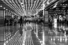 crossing the river of light / silent reflections (Özgür Gürgey) Tags: 2017 50mm bw d750 nikon sabihagökçen airport gates lines reflection istanbul