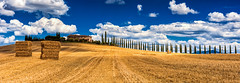 Summer in Tuscany (JSP92) Tags: vacation holiday 2017 summer tuscany blue sky fluffy clouds golden cropd fields landscape