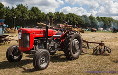 IMG_0067_Woodcote Rally 2017_0112 (GRAHAM CHRIMES) Tags: woodcote rally 2017 steam woodcoterally2017 woodcotesteamrally2017 woodcoterally transport traction tractionengine tractionenginerally steamrally steamfair showground steamengine show steamenginerally vintage vehicle vehicles vintagevehiclerally vintageshow heritage historic classic country commercial preservation wwwheritagephotoscouk restoration woodcotesteam masseyferguson mf 135 tractor 1962 918uyg