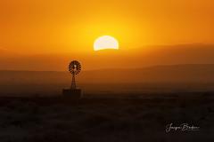 Windmill (Jacqui Barker Photography) Tags: flindersranges southaustralia southaustraliaoutback australia australianoutback australianlandscape australiansunrise sunrise windmill silhouette
