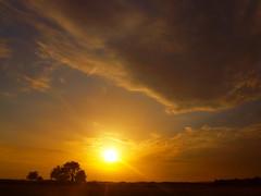 GREY CLOUDS ON THE SKY P7098442 (hans 1960) Tags: sun sunrise sonne sol soleil golden juli clouds nature natur grey licht light trees outdoor wolken landschaft landscape sunbeans sonnenstrahlen