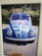 Blue bug, spreadsheet (lizzardo) Tags: beetle bug car automobile googlesheets