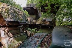 SP-6 (StussyExplores) Tags: austria scrapyard vintage cars teeth rust decay abandoned left behind vehicles explore exploration urebx