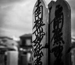 Japan Tokyo Sugamo Honmyoji Grounds
