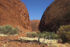 Kata Tjuta Pictures 429 RS (Swebbatron) Tags: fujif20 katatjuta northernterritory australia theolgas valleyofthewinds 2008 radlab lifeofswebb travel redcentre groovygrape
