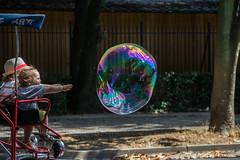 Villa Borghese - Roma (pierluigi.carrano) Tags: roma rome nikon imnikon d3100 bimbi bambini kids bolle sapone ball soap giardini parco park soapbubbles bolledisapone