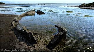 Es va trobar la barca.  (Delta de l'Ebre - Catalunya).