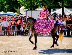 FERIA DE NIMES 2016_06 (zkapov1) Tags: france nimes provence ferie arenes horses riding costumes colorful dress tradition
