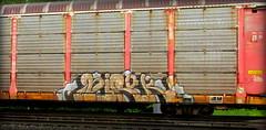 hirok (timetomakethepasta) Tags: hirok ygb lpc freight train graffiti art autorack benching selkirk new york photography jobe