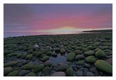 Hvaleyri (Gaflarinn) Tags: steinar grænt sjór sea hafnarfjörður iceland