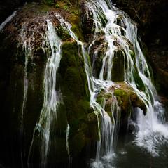 Waterfall Bigăr... (Francizc Chachula) Tags: nikon d7200 30mm waterfall bigar caransebes romania march 2017 green nature natural grass