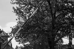 Auschwitz I - Toegang (Lars Blaauw) Tags: auschwitz birkenau blackandwhite concentratiekamp concentrationcamp deathcamp geschiedenis historie history holocaust konzentrationslager massamoord oorlog oświęcim poland polen polska tweedewereldoorlog vernichtungslager war worldwar2 zwartwit