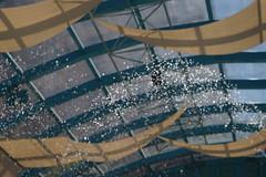 DSC00514[1] (wilsonphoto_a) Tags: maonshan waterdroplets 50mm