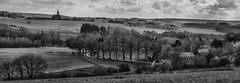 Condroz Landscape II (Eric@focus) Tags: silverefexpro2 bwlandscape nikond7100 belgium condroz panorama noiretblanc nb zwartwit skancheli greatphotographers neroametà