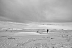 on the Beach (Rene'D.) Tags: 2017 amrum schwarzweiss schwarzweis schleswigholstein germany bw bnw monochrome monochrom sand sands beach coast kniepsand