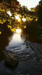 Vanhankaupunginlahti, Helsinki, June 14th 2017. #vanhankaupunginlahti #helsinki #visithelsinki #gopro #goprohero5 #hero5 #finland #vantaajoki #sunshine #auringonpaiste #sunset #auringonlasku (Sampsa Kettunen) Tags: sunshine helsinki hero5 visithelsinki vantaajoki finland vanhankaupunginlahti auringonlasku gopro auringonpaiste sunset goprohero5