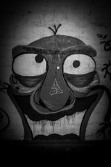 Graffiti Face (stefanfortuin) Tags: graffiti street netherlands nederland dutch overijsel steenwijk tuk tunnel jeugd freak crazy black white nature face portret