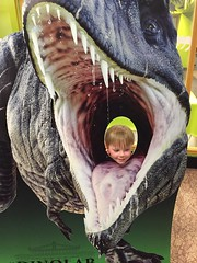 """Paul at Jurassic World at the Field Museum • <a style=""""font-size:0.8em;"""" href=""""http://www.flickr.com/photos/109120354@N07/35311185640/"""" target=""""_blank"""">View on Flickr</a>"""