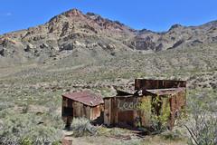 Lead Ghost Mining Town in Death Valley (taharaja) Tags: cactus california deathvalley desert furnacecreek ghosttown jeeping lowestpoint nationalpark offroad oldtown racetrack sealevel zabriskiepoint lakebed movingstones slatflats