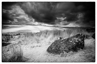 The Beast of Dartmoor