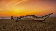 Negombo sunset, Sri Lanka (cattan2011) Tags: waterscape beaches boats seascape sunset srilanka negombo traveltuesday travelbloggers travelphotography travel naturelovers natureperfection naturephotography nature landscapephotography landscape