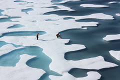 ICESCAPE Researchers; Ponds on the Ocean (NASA on The Commons) Tags: icescape ice cap nasa research goddardspaceflightcenter space climate change