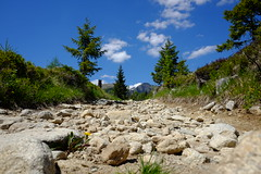 DSCF6088 (Miroslav Pivovarsky) Tags: vysoke tatry slovak slovakia natur nature outdoor fujifilm x70 mountains hiking hikings strbske pleso tarn sun day sunday