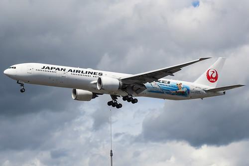 Kei Nishikori - JA733J Boeing 777 JAL
