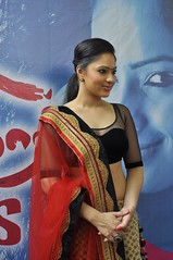 Indian Actress Nikesha Patel Hot Sexy Images Set-2 (63)