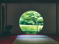 Hole in the Wall (maida0922) Tags: a7r fe85mmf14gm japan kanagawa kamakura meigetsuin temple buddhism zen tea round window hole wall japanese traditional dark spring green 明月院