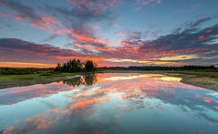 Fire And Water (nicklucas2) Tags: newforest slufters pond reflection sunrise dawn cloud water landscape