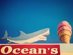 Even Sharks like Ice Cream (ToGa Wanderings) Tags: california cone cool heat sandiego holiday seaside random fun treat summer cold refreshing pacificbeach boardwalk oceans juxtaposition white great shark icecream