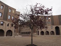 Place d'Espagne (Christophe Girod) Tags: olympus omd em10 sourderie saintquentinenyvelines montignylebretonneux ricardobofill