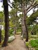 07.06.2017 - Batz, jardin Georges-Delaselle (19) (maryvalem) Tags: france bretagne finistère îledebatz alem lemétayer alainlemétayer