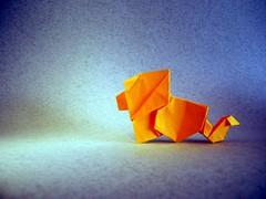 Simple Lion - Barth Dunkan (Rui.Roda) Tags: origami papiroflexia papierfalten leon leão simple lion barth dunkan