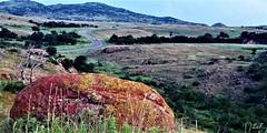2017-07-04 (lillypotpie) Tags: oklahoma wichita mountians landscape rocks