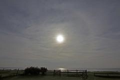 Partial 22 degree sun halo Wilsthorpe 07-07-2017 at 0726 BST IMG_8854 (vinkev) Tags: sunhalo 22degreesunhalo